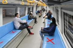 Semnalistică transport în comun_vagon tren